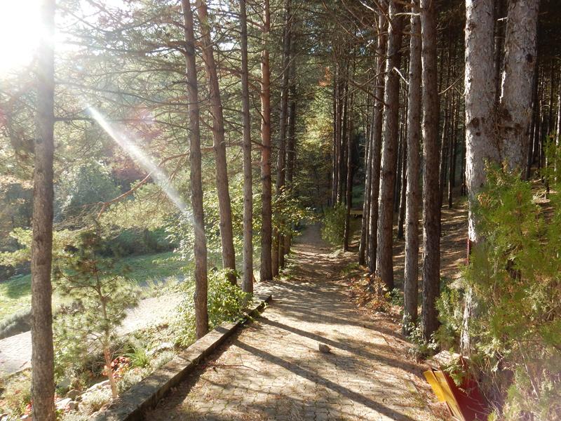 Cesta od Chrámu světla